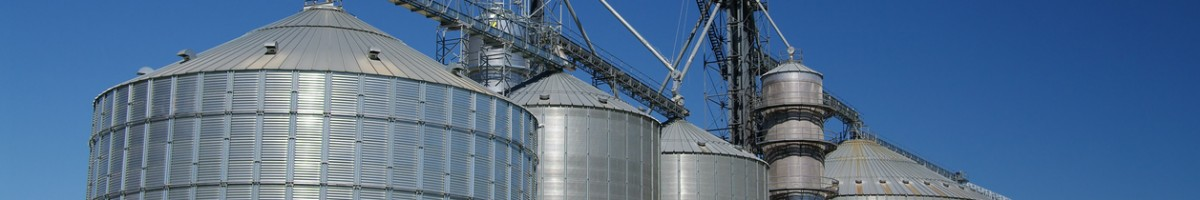 Large silos hold corn, soybeans and other grain for producers in southern Wisconsin.